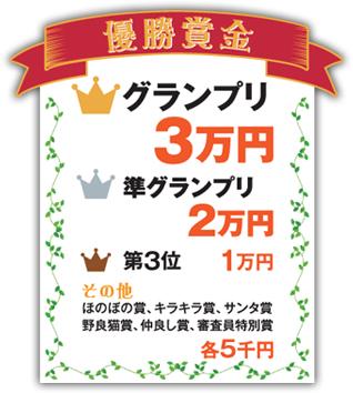 [優勝賞金] グランプリ:3万円、準グランプリ:2万円、第3位:1万円、その他:各5千円